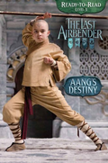 Novel Aang's Destiny