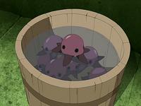 Purple pentapus