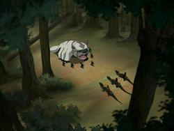 Kyoshi Warriors defending Appa