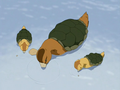 Turtle ducks.png