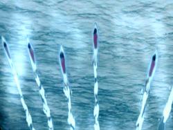 Torpedos de hielo