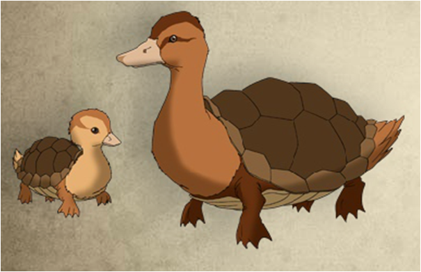 Imagen - Pato tortuga anatomia.png | Avatar Wiki | FANDOM powered by ...