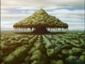 2х04 Дерево