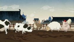 Hybrid pigs