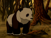 Panda Hei Bai