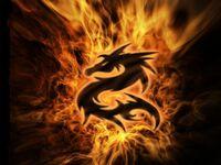 800-FlameDragon2