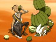 Sokka und Momo trinken Kaktussaft