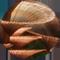 MainBanner-Flora