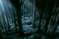 Thumbnail for version as of 13:28, November 5, 2011