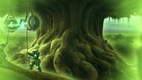 Harvesting the banyan-grove tree