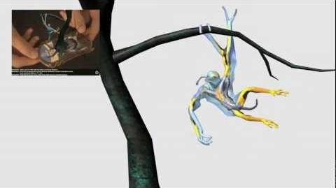 Prolemuris - Avatar Work Project