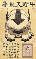Lost Appa flyer