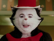 Mike Myers as The Cat
