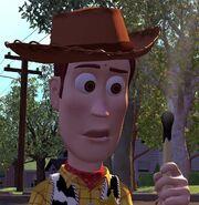 Tom Hanks as Woody (Voice) (TS)