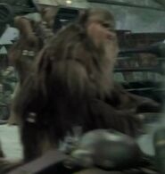 David Stiff as Wookiee