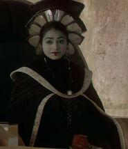 Ayesha Dharker as Queen Jamillia