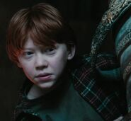 Rupert Grint as Ron Weasley (PS)