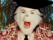 Mike Myers as The Cat (Bull Fighter)