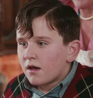 Harry Melling as Dudley Dursley (PS)