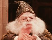 Warwick Davis as Professor Flitwick (PS)