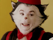 Mike Myers as The Cat (Cook)