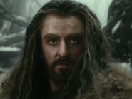 Richard Armitage as Thorin (DOS)
