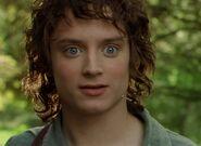 Elijah Wood as Frodo (FOTR)