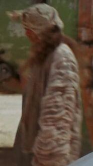 Lorne Peterson as Mos Espa Citizen
