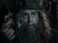 Sylvester McCoy as Radagast (DOS)