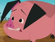 Charlie Dell as Ollie, the Pig (Voice)