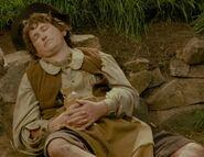 Unknown as Sleeping Hobbit