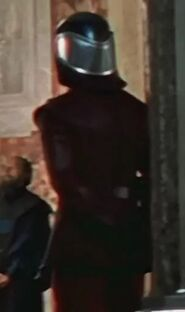 Unknown as Naboo Palace Guard 2 (TPM)