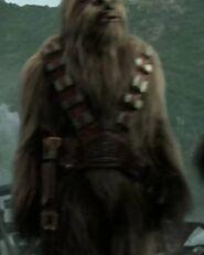 James Rowland as Wookiee