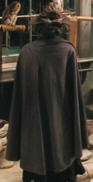 David Decio as Diagon Alley Wizard