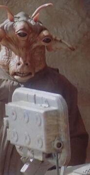 Gibb Sutherland as Pod Race Spectator
