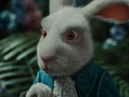 Michael Sheen as White Rabbit (Voice) (AIW)