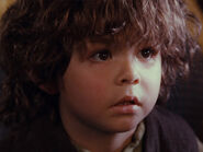Unknown as Cute Young Hobbit 13