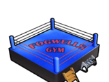 Fogwell's Gym Boxing Ring