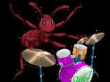 Rocker Ant