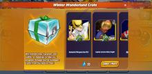 Winter Wonderland Crate