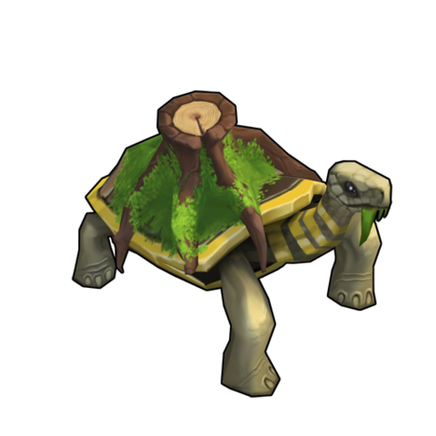 File:Forest Tortoise.png