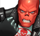 Red Skull Icon