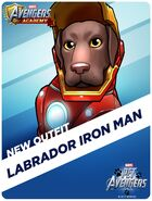 New Outfit Pet Avengers Event Labrador Iron Msn
