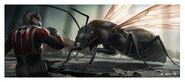 Ant-Man - Konzeptzeichnung 64