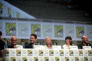 Comic Con Panel des Casts 2014