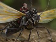 Ant-Man - Konzeptzeichnung 50
