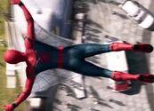 Web wings