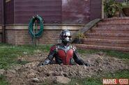 Ant-Man Marvel.com Bild 5