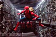 Spider-Man Homecoming Entertainemt Weekly Bild 1