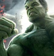 Hulk age
